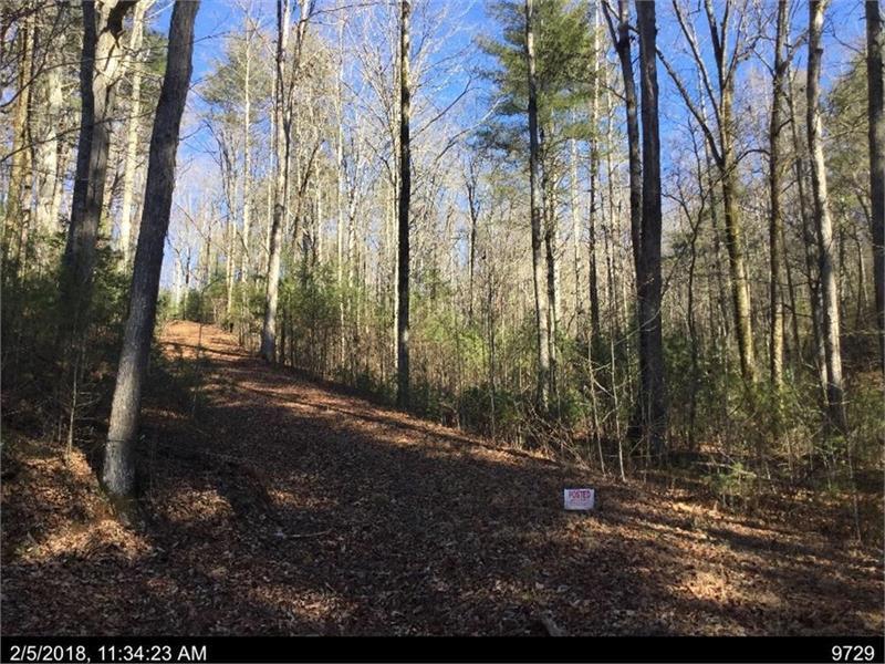 02D PLEASANT HILL Trail, Ellijay, GA 30540